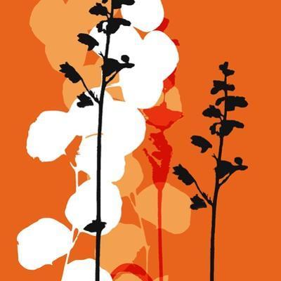 Saffron Indignation by Jan Weiss