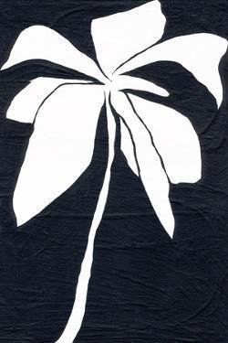 White Flower by Jan Weiss