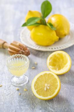 Lemons, Citrus-Press and Juice by Jana Ihle