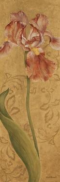 Iris Elegance I by Jane Carroll