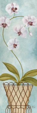 Tropical Adornment I by Jane Carroll