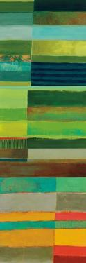 Fields of Color I by Jane Davies