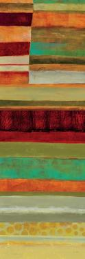 Fields of Color V by Jane Davies