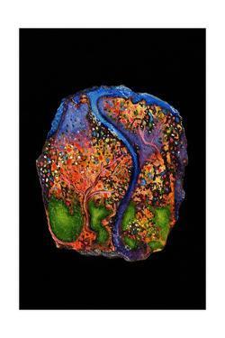 Garden of Eden, 2007 by Jane Deakin