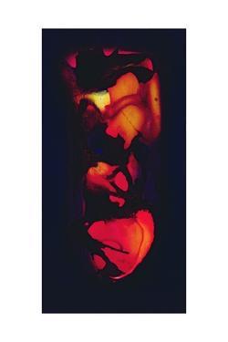 Heart by Jane Deakin