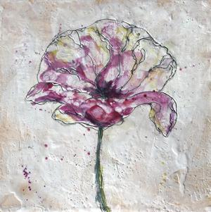 Pink Poppy on White by Jane Fox