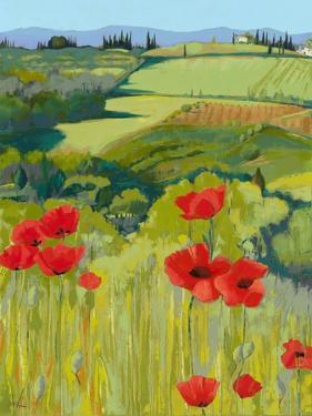 Field of Poppies by Jane Henry Parsons