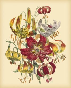 Garden Bouquet III by Jane Loudon