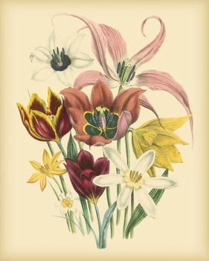 Garden Bouquet IV by Jane Loudon