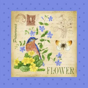 Blooming Garden I by Jane Maday