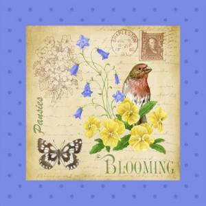 Blooming Garden IV by Jane Maday