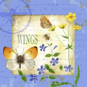 Butterfly Meadow I by Jane Maday