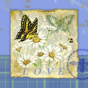 Papillon Plaid I by Jane Maday