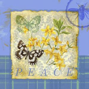 Papillon Plaid IV by Jane Maday