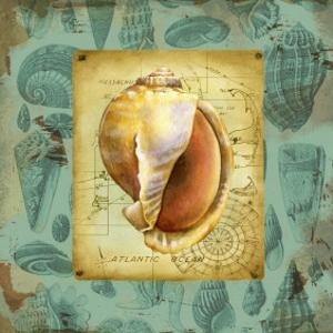 Seaside Gifts II by Jane Maday