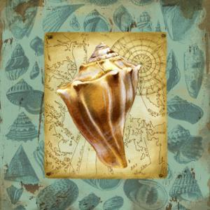 Seaside Gifts III by Jane Maday