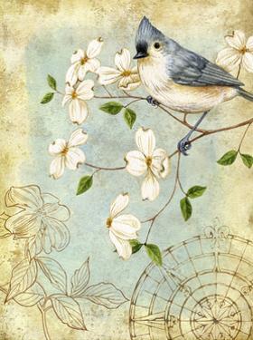 Songbird Sketchbook IV by Jane Maday