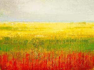 A Field of Marigolds by Jane Morten