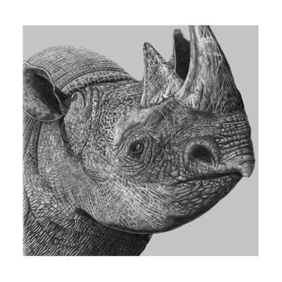 Rhino, 1990 by Jane Peart