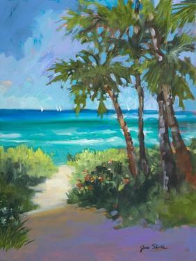 Caribbean View I by Jane Slivka