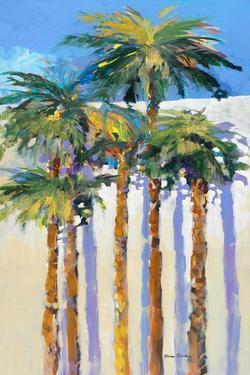 Shadow Palms I by Jane Slivka