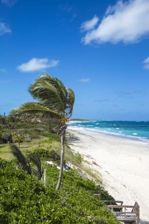 Beach near Nippers Bar, Great Guana Cay, Abaco Islands, Bahamas, West Indies, Central America by Jane Sweeney