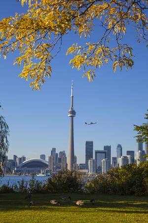 Canada, Ontario, Toronto, View of Cn Tower and City Skyline from Center Island by Jane Sweeney