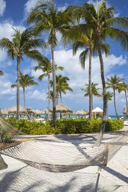 Caribbean, Netherland Antilles, Aruba, Hammock on Palm beach by Jane Sweeney