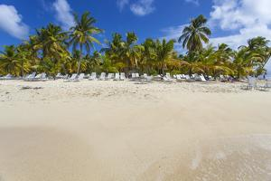 Cayo Levantado, Samana, Eastern Peninsula De Samana, Dominican Republic, West Indies, Caribbean by Jane Sweeney
