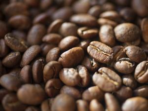 Colombia, Caldas, Manizales, Colombian Coffee Beans by Jane Sweeney
