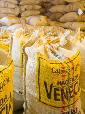 Colombia, Caldas, Manizales, Hacienda Venecia, Coffee in Sisal Bags Ready for Export by Jane Sweeney