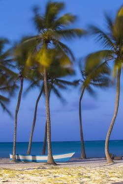 Dominican Republic, Punta Cana, Cap Cana Beach by Jane Sweeney