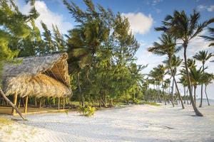 Dominican Republic, Punta Cana, Cap Cana, Juanillo Beach by Jane Sweeney