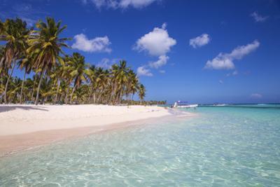 Dominican Republic, Punta Cana, Parque Nacional Del Este, Saona Island, Canto De La Playa by Jane Sweeney