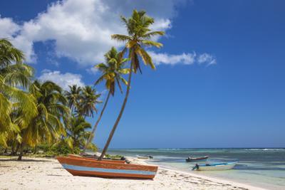 Dominican Republic, Punta Cana, Parque Nacional Del Este, Saona Island, Mano Juan by Jane Sweeney
