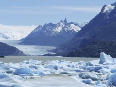 Grey Glacier, Torres Del Paine National Park, Chile, South America by Jane Sweeney