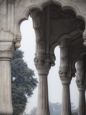 India, Delhi, Old Delhi, Red Fort by Jane Sweeney