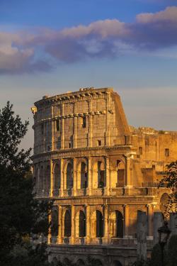 Italy, Lazio, Rome, the Colosseum by Jane Sweeney