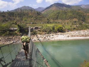 Man Carrying Vegetables across a Rope Bridge, Bandare Village, Trisuli Valley, Nepal by Jane Sweeney