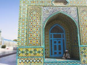 Pilgrim Sits in a Niche at the Shrine of Hazrat Ali, Mazar-I-Sharif, Afghanistan by Jane Sweeney