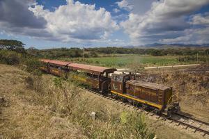 Railway Train by Jane Sweeney