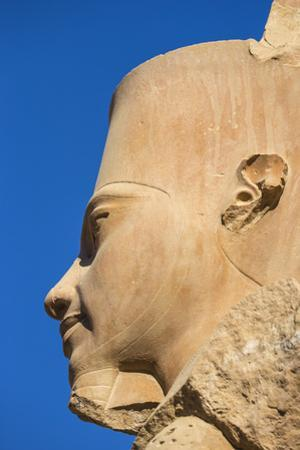 Statue of Tutankhamun, Karnak Temple, UNESCO World Heritage Site, near Luxor, Egypt, North Africa,  by Jane Sweeney
