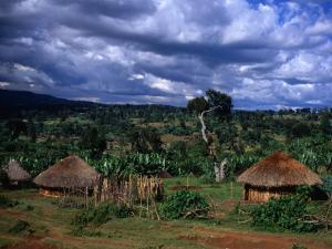 Traditional Village Huts, Southern Nations, Nationalities and Peoples, Ethiopia by Jane Sweeney