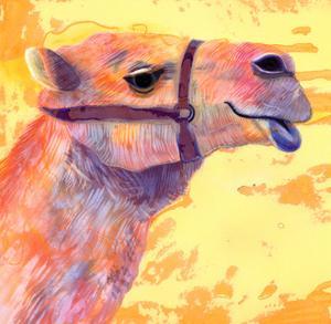 Camel, 1994, by Jane Tattersfield