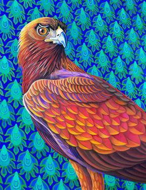 Golden eagle by Jane Tattersfield
