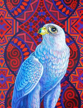 Grey falcon by Jane Tattersfield