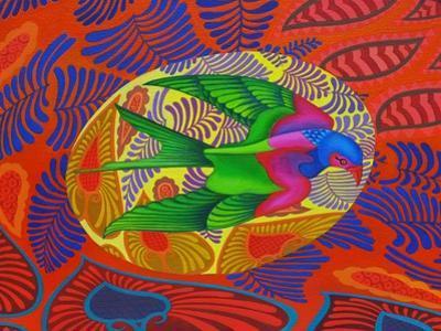 Swallow-Tailed Kite, 2012