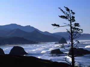 Cannon Beach from Ecola State Park, Oregon, USA by Janell Davidson