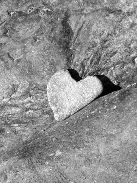 Heart Shaped Rock, Sradled in Larger Rock by Janell Davidson
