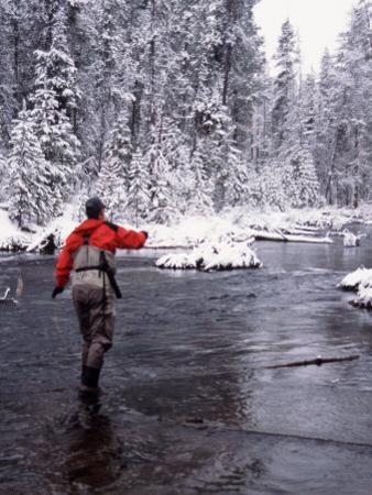 Man Fly Fishing in Fall River, Oregon, USA